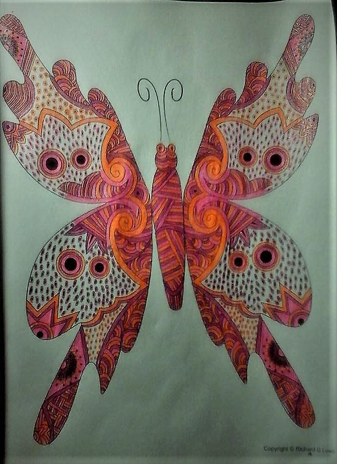 Additional Images: Butterfly Enchantment Adult Coloring Book