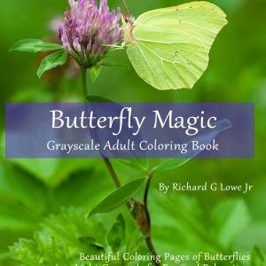 Butterfly Magic Grayscale Adult Coloring Book: Beautiful Coloring Pages of Butterflies in a Light Grayscale for Fun and Relaxation